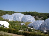Friday Photos: Getting geometric at the Eden Project