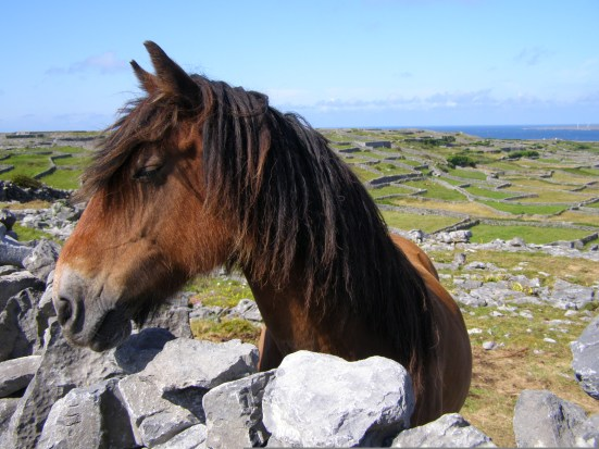 Inis Oirr, Aran Islands