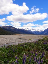 Planning a visit to New Zealand? Top tips for visiting New Zealand