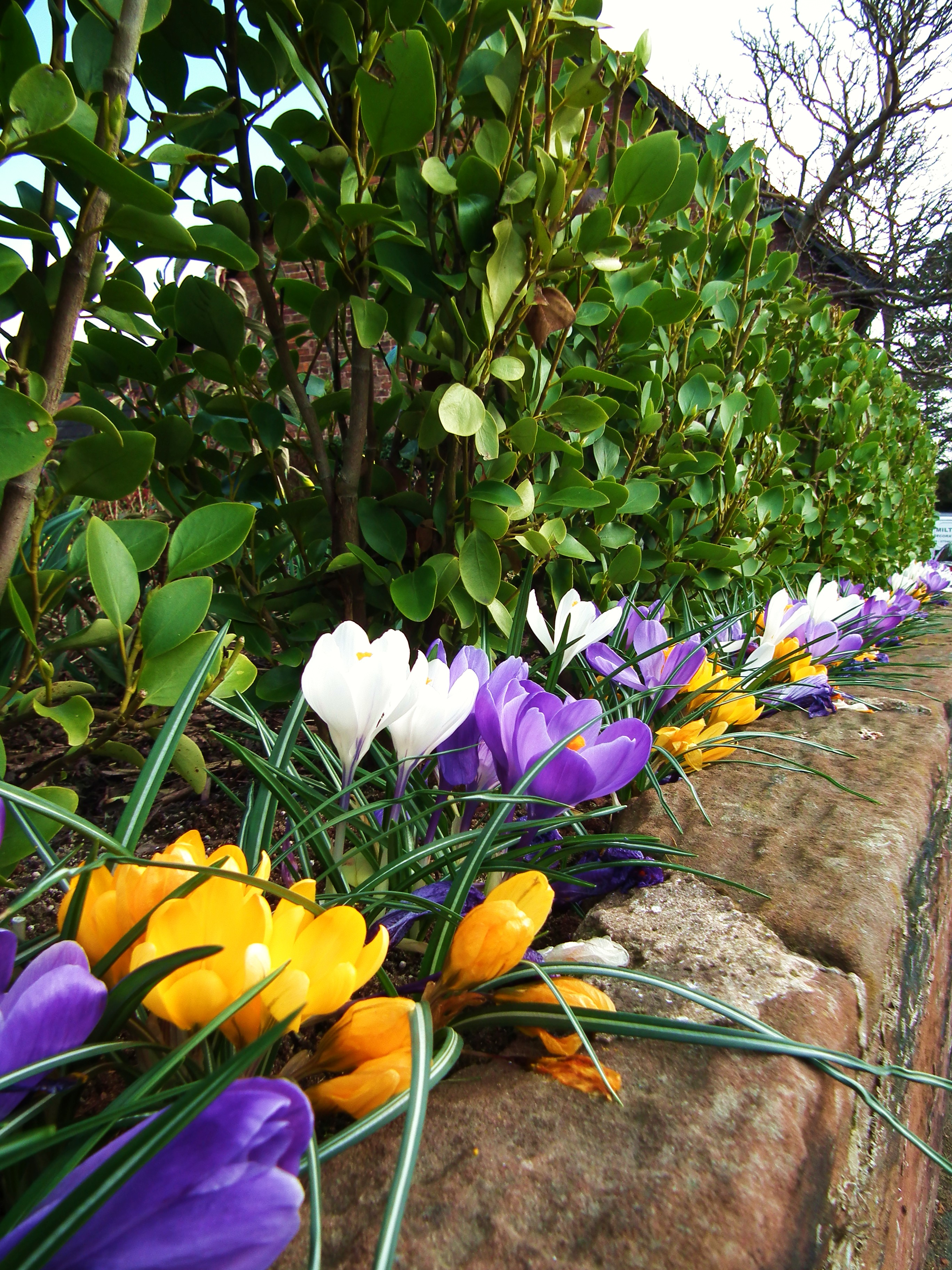 Spring Colours In Northwest England A Crafty Traveler Family And