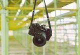 Travel Craft Alert! DIY CameraStrap
