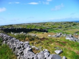 Friday Photos: Fields on Inis Oirr, Ireland